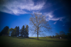 May 20 – pinhole (Thingyfy Pinhole Pro S: ~11mm on A7Riii)
